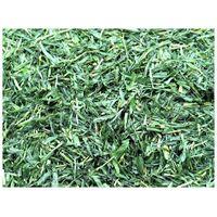 Barley grass leaf, cut, powder, powder extract