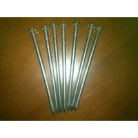 Polished common nail from direct manufacturer