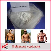 Anabolic Androgenic Steroid Powder Boldenone Cypionate CAS: 106505-90-2 thumbnail image