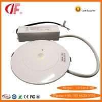 LED Self testing Emergency Downight , Mini Maintained Emergency Light, Dustproof Emergency Light