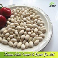 High Quality Dry Japanese Type White Kidney Beans Wholesale thumbnail image