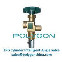 LPG intelligent valves