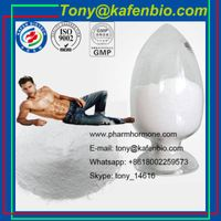 Factory Direct Supplying Anabolic Steroids Hormone Powder 7-Keto DHEA