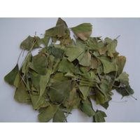 Ginkgo Folium/Ginkgo biloba leaves thumbnail image