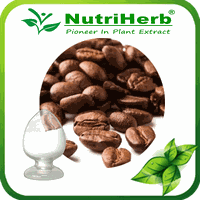 Natural Cocoa Extract 50% 70% Theobromine