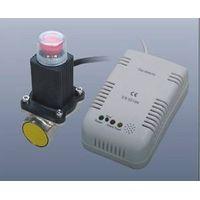 Gas detector, gas detection, gas detector manufacturer
