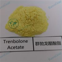 Trenbolone Acetate Raw Powder CAS 10161-34-9 Tren Ace injection thumbnail image