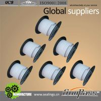 Hot Sale Pure PTFE Packings