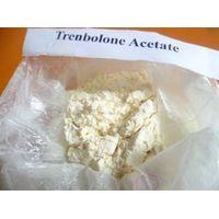 Trenbolone Acetate for Steroid hormone