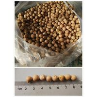chickpeas thumbnail image