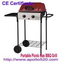 Portable Picnic Gas BBQ Grill