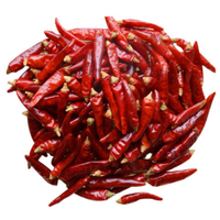 High Quality Wholesale Dry Hot Red Chilli Pepper
