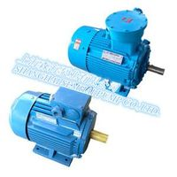 High-efficiency electric motor