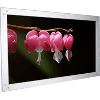 Rear (Dual Viewer) Frame Projection Screen thumbnail image