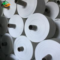 22-75cm white pp woven fabric roll sack roll bag roll