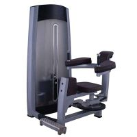 Rotary Torso gym equipment / fitness equipment