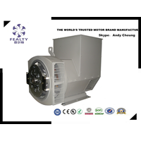 TWG series, three-phase brushless synchronous generator