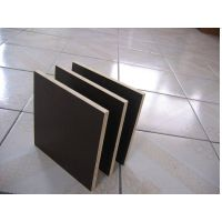 all sizes construction grade plywood for building from factory
