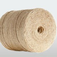S-twist Unclipped Sisal Yarn of Great Evennes Good for Wire Rope Core thumbnail image