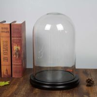 Glass Dome With Base D20xH30cm