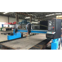 Servo motor Gantry cnc gas plasma cutting machine 300012000mm