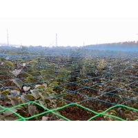 2016 High quality Anti-bird Netting (plastic)