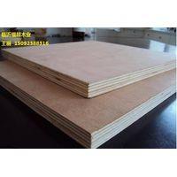 Aucoumea klaineana plywood