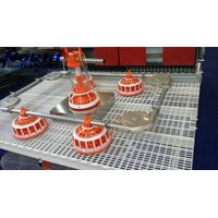 Feeding pan system for poultry farm equipment thumbnail image