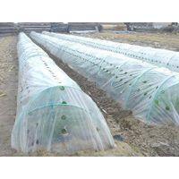 Greenhouse and Small Tunnel Films