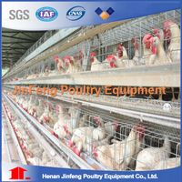 Automatic Pullet Chicken Cage with a Frame