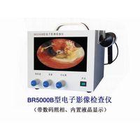 Portable Endoscopic Imager
