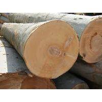 Timber Wood thumbnail image