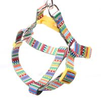 Dog Harness: Popular dog harness supplier with rainbow logo thumbnail image