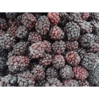 frozen blackberry, iqf blackberry, uncut, whole, great quality and price