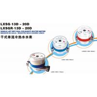 LXSG-13D~20D,LXSGR-13D~20D water meter