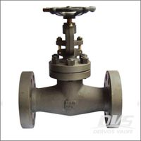 Integral Flanged Globe Valve, Class 150, 2 Inch, A105N