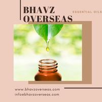 Essential oils thumbnail image