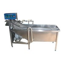 Multifunction Vegetable Washer thumbnail image