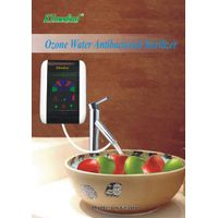Ozone water purifier for wash fruit and vegetables