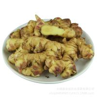 Air Dry Ginger thumbnail image