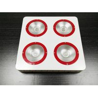 New Arrival Programmable High Luminous Efficacy LED Grow Light, COB/Promotional Price, for Veg/Bloom