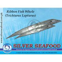 Ribbon fish,Trichiurus Lepturus thumbnail image