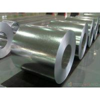 prime quality good price galvanized steel sheets in coil