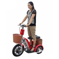 2000W EEC Electric Tricycle Motorcylce/Cargo Tricycle Scooter