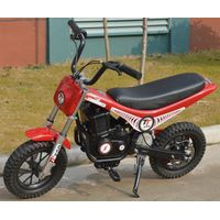 250W scooter YG250DH-2 thumbnail image