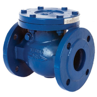 double flange non-return valve