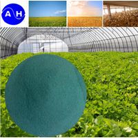 Amino Acid Chelate Copper Organic Fertilizer Amino Acids