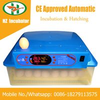Solar Powered Automatic Mini 48 Eggs Incubator Small Hatcher Machine