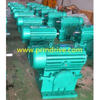 Cw Series Worm Reducer/Worm Gearbox