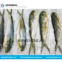 MAHI MAHI - CORYPHAENA HIPPURUS SEAFOOD - PORTION - FILLET - WGG - STEAK - WHOLE FISH FROZEN thumbnail image